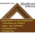 Bilderrahmen S11 Weinrot F50x60cm