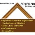 Bilderrahmen S12 gold F50x60cm