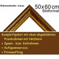 Bilderrahmen S13 Goldbraun F50x60cm