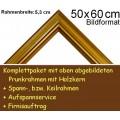 Bilderrahmen S15 Gold F50x60cm